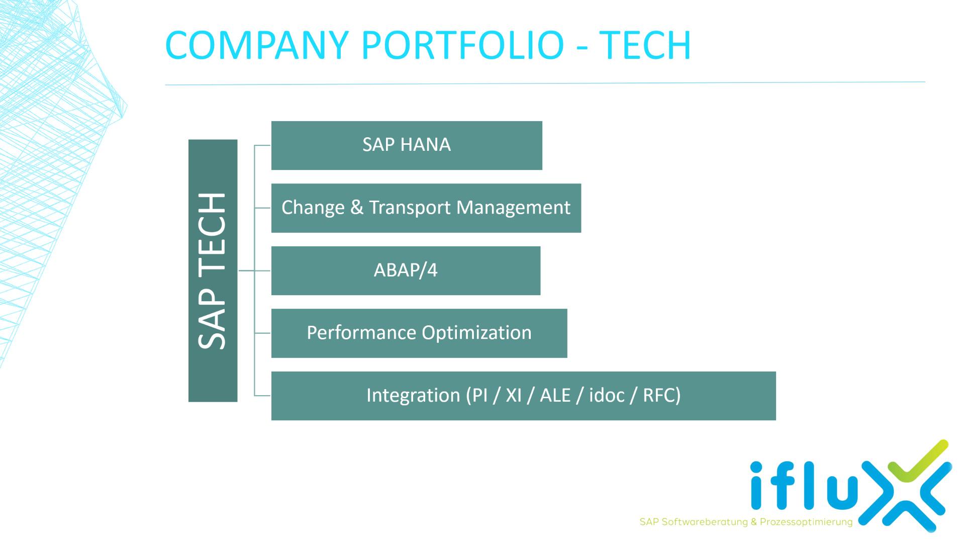 Portfolio - IT & SAP Technology