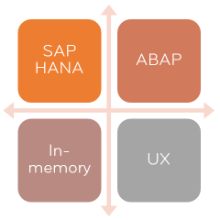Portfolio - SAP Technology